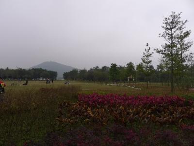 华侨城天鹅湖