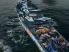 《战舰世界》依阿华涂装截图